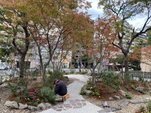 cozy garden KKRホテル博多 紅葉