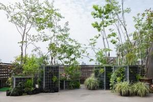 屋上ガーデン COZYの庭