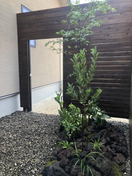 坪庭 COZYの庭 外構 植栽